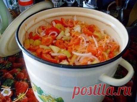 """Салат """"Мечта"""" Готовлю по уникальному рецепту уже четвертый год. Муж и дети лопают зимой так, что за ушами трещит! Ингредиенты: Болгарскuй перец – 1 кг., зрелые помидоры – 3 кг., репчатый лук – 1 кг., морковь – 1 кг., сахар – 6 ст. ложек с горкой, растительное масло – 300 гр., уксус 6% – 6 ст. ложек, […]"""