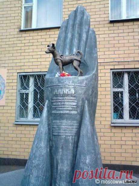 . Памятник Лайке (1954 — 3 ноября 1957) — советской собаке-космонавту, первому животному, выведенному на орбиту Земли. Была запущена в космос 3 ноября 1957 года в половине шестого утра по московскому времени на советском корабле «Спутник-2». На тот момент Лайке было около двух лет, и вес — около 6 килограммов. Возвращение Лайки на Землю не планировалось. Как и многие другие животные в космосе, собака погибла во время полёта — через 5-7 часов после старта она умерла от стресса и перегрева