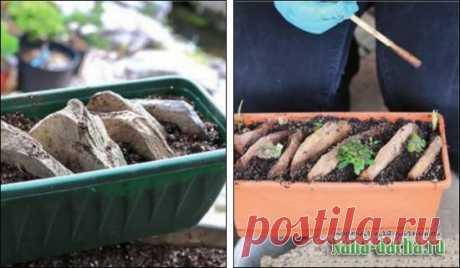 Альпинарий в корыте своими руками: устройство, схемы, растения