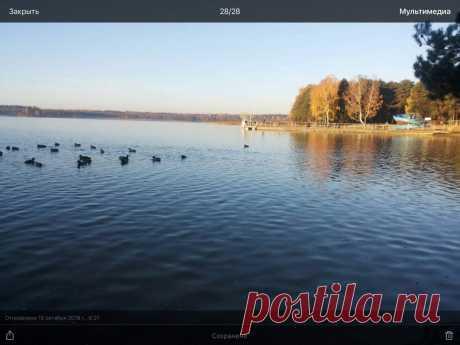 """Фото из альбома """"Виды моего города"""" - GoogleФото"""