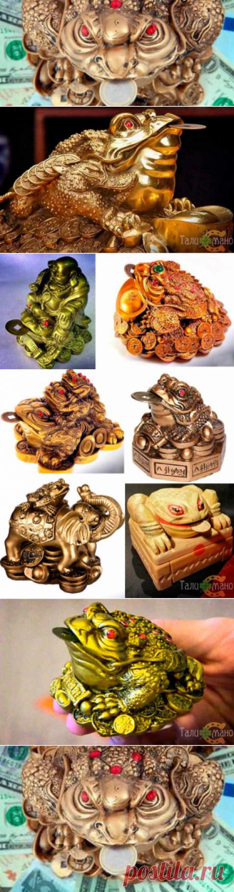 Денежная жаба: что символизирует, виды талисмана, куда ставить