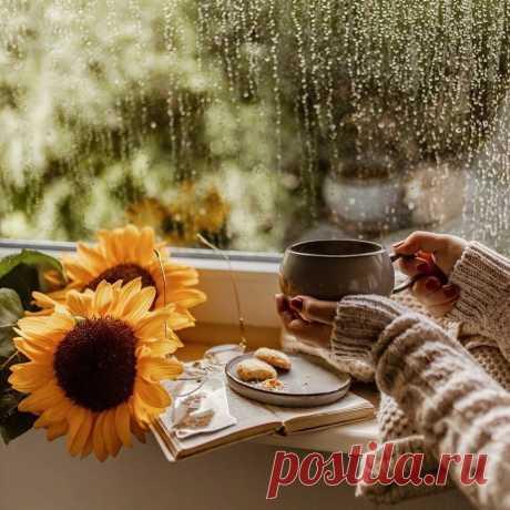 Будет дождь непременно... Осенний холодный и долгий, раздражающий всех, точно женский досадный каприз. Мелкий дождь октября, и разбитого неба осколки застучат по листве, осыпаясь лавиною вниз... Вновь с букетом зонтов выйдет город встречать непогоду... Может статься, планета - затопленный ливнями рай? Щедро льют небеса нам на головы вечную воду, видно там наверху чистых слёз набралось через край...