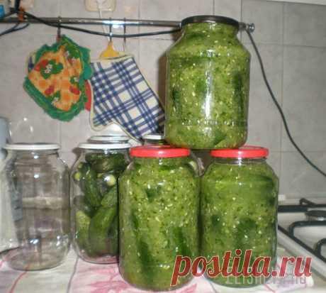 Огурцы в огурцах на зиму пошаговый рецепт с фото | Блог elisheva.ru