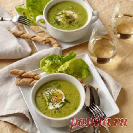 Суп из шпината с яйцом. Суп из шпината с яйцом – исключительно вкусное и полезное блюдо, которое даже включают в диетическое питание. В нем действительно масса витаминов и микроэлементов благодаря шпинату.