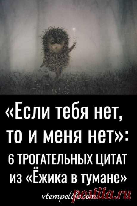 «Если тебя нет, то и меня нет»: 6 трогательных цитат из «Ёжика в тумане»   В темпі життя