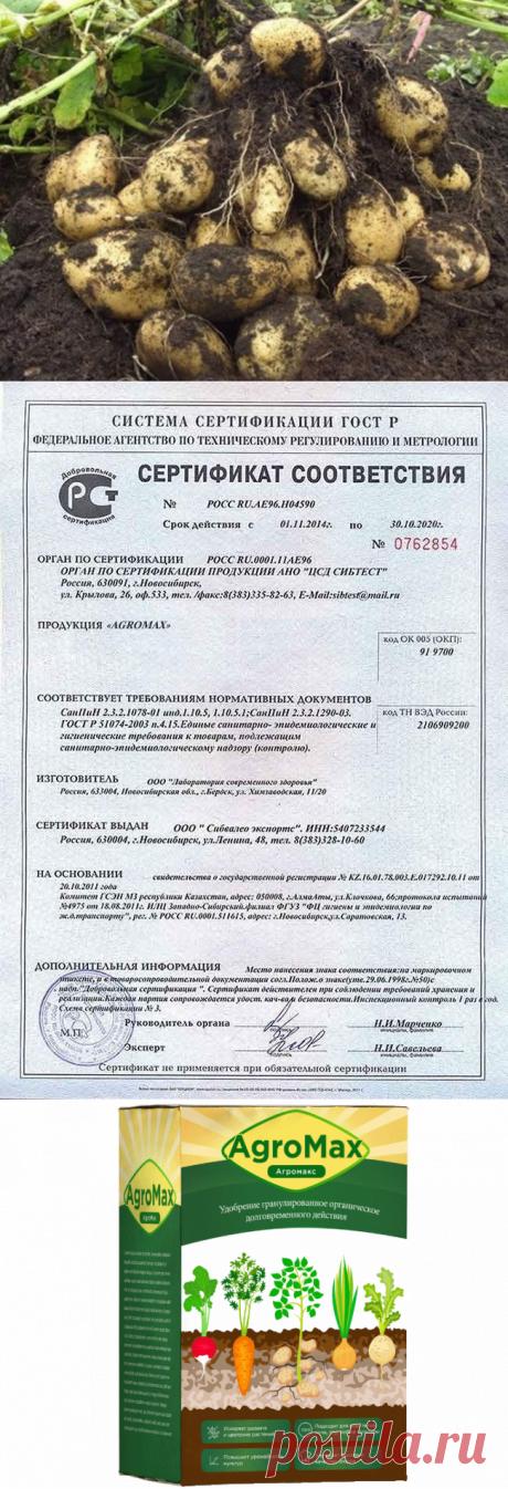 Mednews - портал о медицине в России