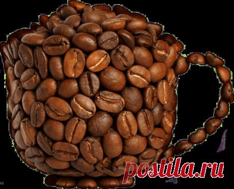 Как вернуть залежавшимся зернам кофе аромат? — Полезные советы