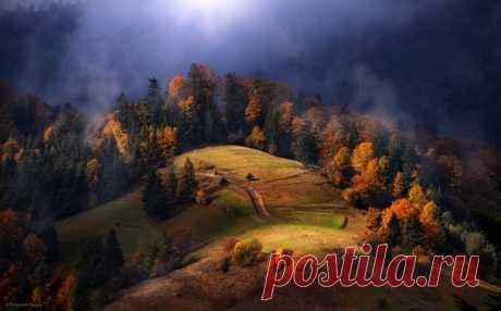 Синевирский перевал, Карпаты. Автор фото — Сергей Полюшко: nat-geo.ru/photo/user/60913/