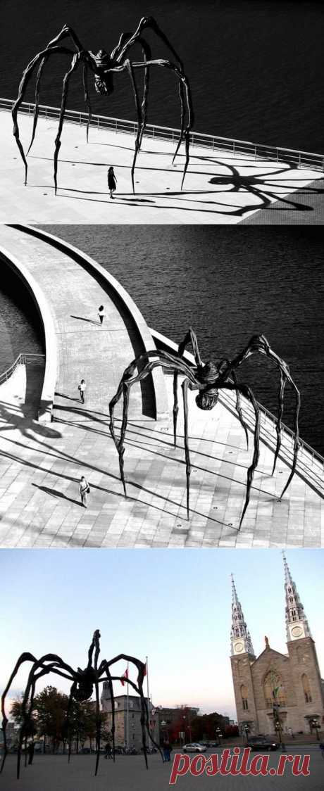 Скульптура Паучихи Маман в Токио (8 фото) - Fishki.Net | Фишкина картинка