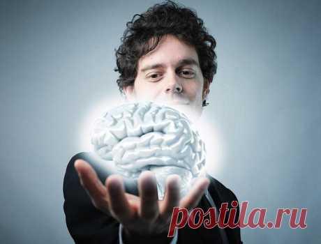 14 простых способов максимально стимулировать работу мозга Вам знакомо неприятное чувство, когда вы встретились со знакомым в магазине, но совершенно не помните, как его зовут? Что-то такое бывало со всеми. Хотя наш мозг и является самым мощным компьютером на...