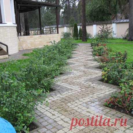 Строгая садовая дорожка из плитки с геометрическим узором. #дача #сад #дизайн #ландшафтныйдизайн #ландшафт #коттедж #загородом #идея Лучшие идеи обустройства загородных участков! Присоединяйтесь 👉 @dacha_blog