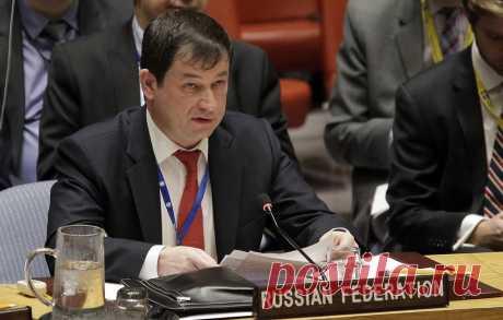 Россия напомнила Германии в СБ ООН, кто в недавней истории нападал на территорию Украины - Политика - ТАСС