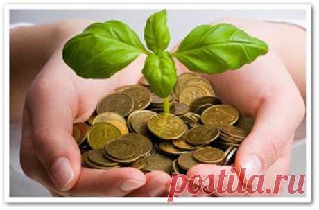 Как привлечь деньги (обучающее видео)