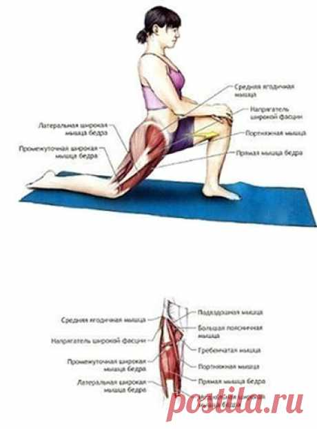 5 элементарных упражнений на растяжку: эффективный комплекс для развития гибкости.  Чем старше ты становишься, тем больше мышцы и связки теряют свою эластичность. В наше время тело человека не функционирует в полную силу из-за разнообразных изобретений человечества, которые облегчают жизнь. Поэтому очень важно заниматься спортом. Тренируя собственное тело, ты надолго сможешь сохранить свою молодость и здоровье. Но, тренируясь, не следует забывать о растяжке. Заниматься стр...