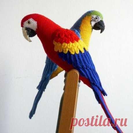 Вязаный попугай ара крючком