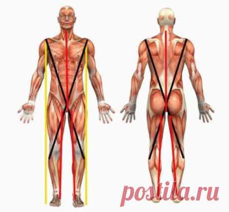 «Нитка с иголкой»: СУПЕР упражнение для позвоночника.         Для сохранения здоровья очень важно рационально сочетать движения и отдых, чтобы не перенапрягать позвоночник. В сохранении здоровья нет мелочей. Скамеечка, подставленная под ноги сидящего (ес…