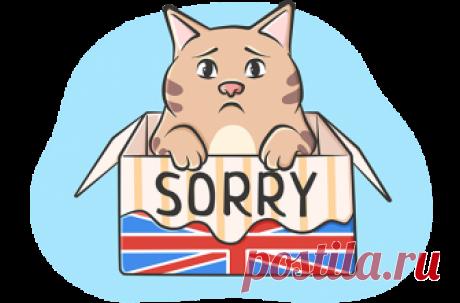 Извинения на английском — sorry, excuse me, pardon, apology ‹ Инглекс