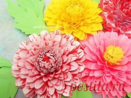 Цветы из бумаги: мастер-класс — Поделки с детьми