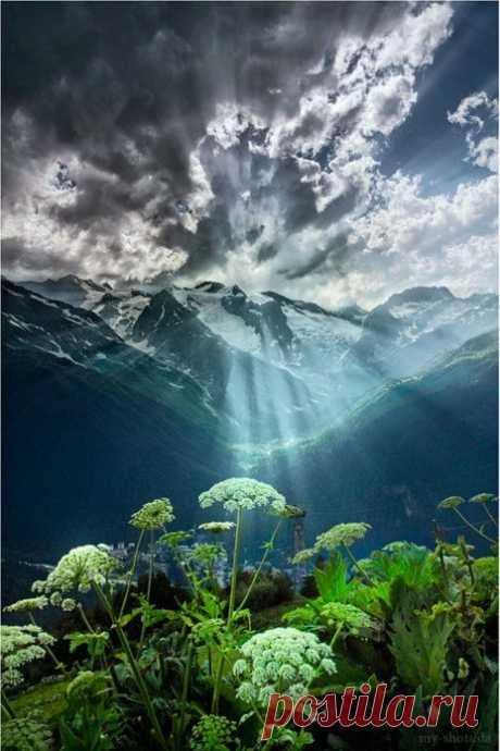Belle nature