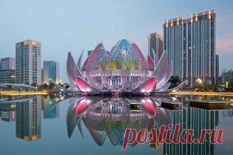 Здание в форме цветка лотоса в Китае - Путешествуем вместе