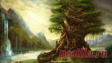 Какое дерево является для вашей семьи хранителем...