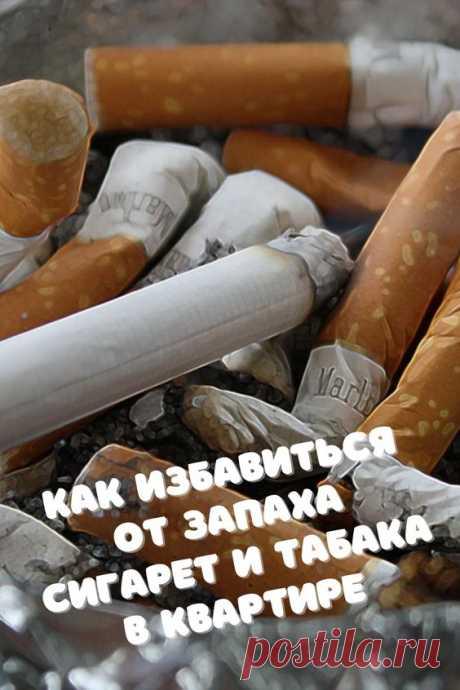 Запах сигарет и дыма, скопившийся в квартире на какое-то время, неприятен даже самым заядлым курильщикам. Многих из вас будет интересовать, как можно избавиться от запаха табака в квартире.