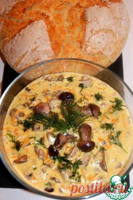 Маслята в сливочном соусе – кулинарный рецепт