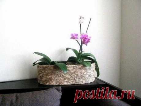 Идея: как декорировать цветочный горшок своими руками Как красиво оформить цветочный горшок в доме