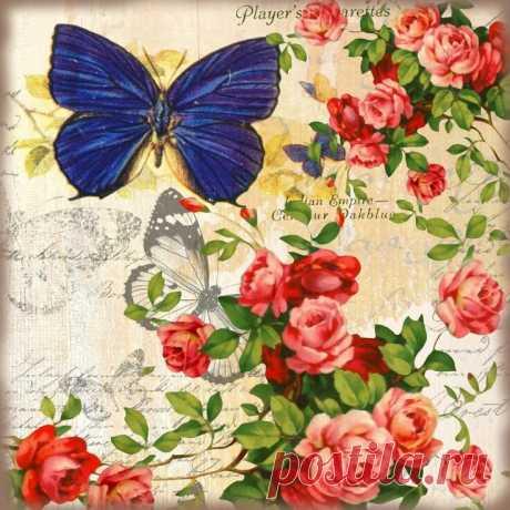 «Картинки для декупажа в хорошем качестве: бабочки - Ladiesvenue.ru» — карточка пользователя Татьяна С. в Яндекс.Коллекциях