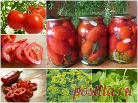 """Помидоры  """"по царски"""" Очень вкусные помидорчики, которые очень долго могут храниться, но как правило, их съедают ну очень быстро."""