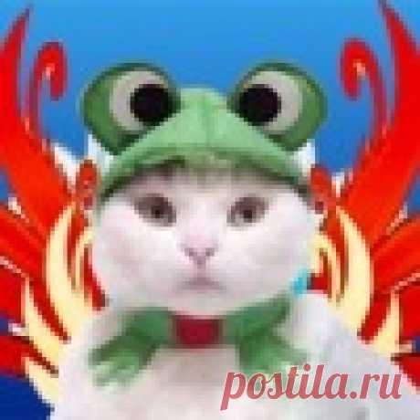 Полина Киреева