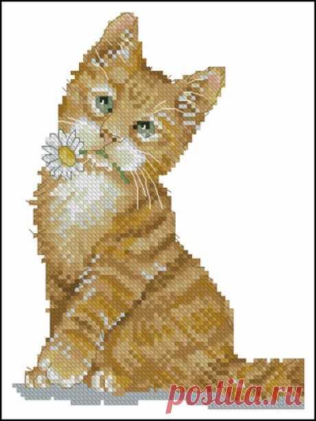 Кошка с ромашкой – Схема вышивки крестом, скачать бесплатно! Скачать схему для вышивки крестиком «Кошка с ромашкой» в хорошем качестве. Новые бесплатные схемы из рубрики «Животные» только на MyPatterns.ru!