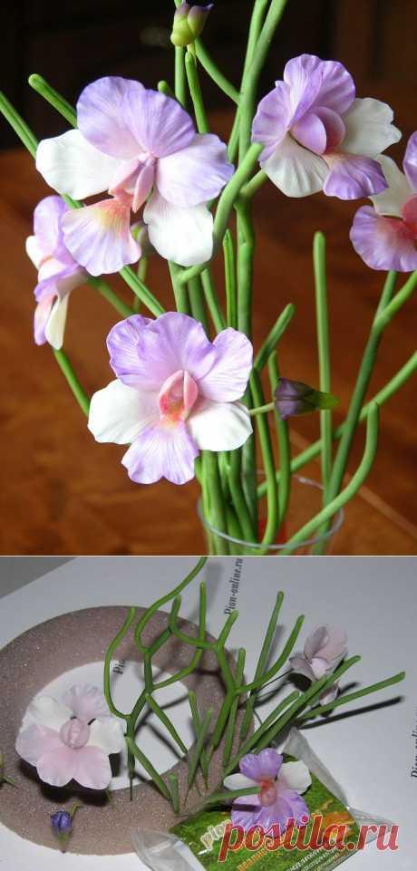 Цветы из холодного фарфора ОРХИДЕЯ.