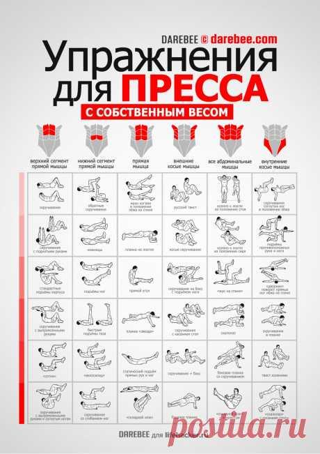 INFOGRAFIKA: 36 ejercicios para la presión - Layfhaker