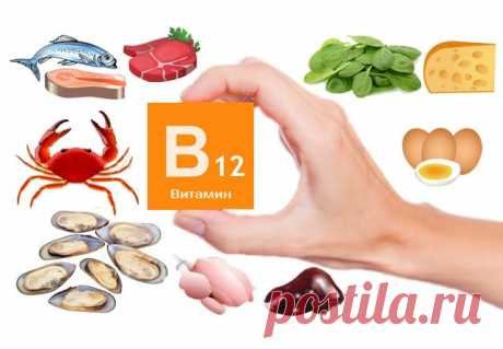 Витамин в12 где содержится больше всего - Всё о витаминах