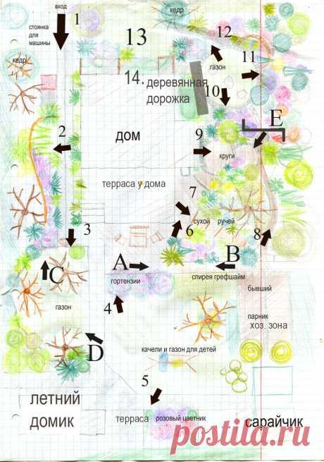 План моего участка | Хюгге на шести сотках | Яндекс Дзен