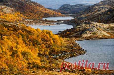 Золотая осень на Кольском полуострове. Дорога домой   Все о туризме и отдыхе