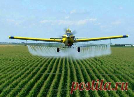 Пестициды – сельскохозяйственные ядохимикаты химической природы, предназначенные для борьбы с вредителями, болезнями растений, паразитами, сорняками, насекомыми. Все пестициды можно разделить на группы, в зависимости от химического состава, использования или способу воздействия. Подробнее на сайте интернет-магазина УкрСемена