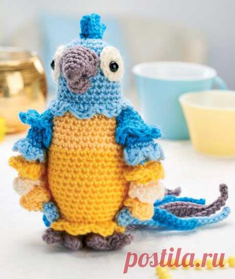 Попугай Диего: схема вязаной игрушки амигуруми