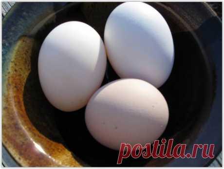 Крещенское выкатывание на три яйца - Общество Тайных Знаний