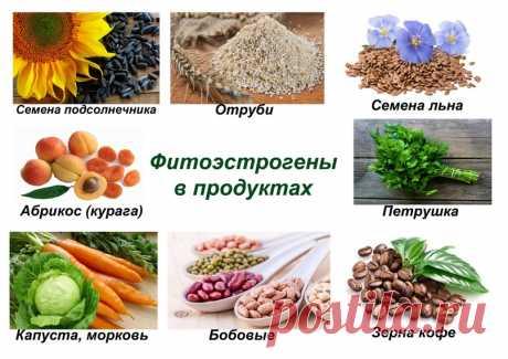 Название: Эстроген — гормон женской молодости. В каких продуктах содержится. |  ВКонтакте Найдено в Google. Источник: vk.com