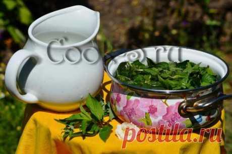 ¡La confitura de esmeralda de la menta - es sabrosa, es útil, es medicinal!