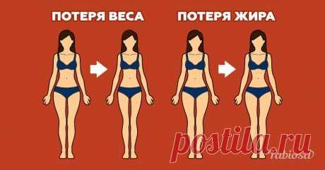 Вот в чем разница между потерей веса и сжиганием жира | Милая Я Похудение — важная составляющая жизни многих людей, особенно женщин. Некоторые просто зациклены на диетах, потому что каждый год мечтают дождаться лета и выйти на пляж с идеальной фигурой! Оказывается, что существует определенная разница между потерей веса и сжиганием жира. Вам стоит об этомзнать! Как правило, есть трипоказателя, характерных для снижения веса: потеря жира, потеря воды и потеря мышц. Это не о...