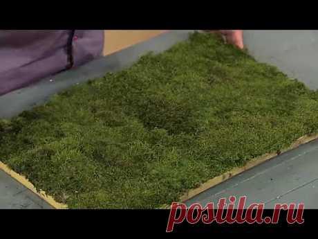 Как из мха сделать коврик для ванны   Ранок з Україною