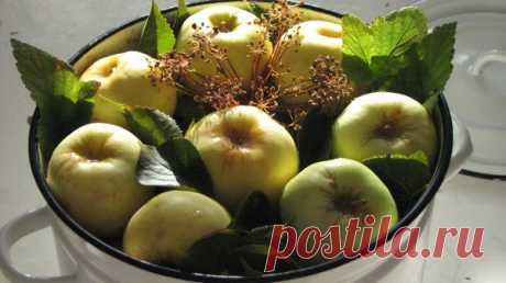 Яблоки моченые в ржаном рассоле. Яблоки моченые в медовой заливке. Два рецепта под катом... Существует 2 основных способа приготовления моченых яблок : Первый способ, это когда яблоки замачиваются в …