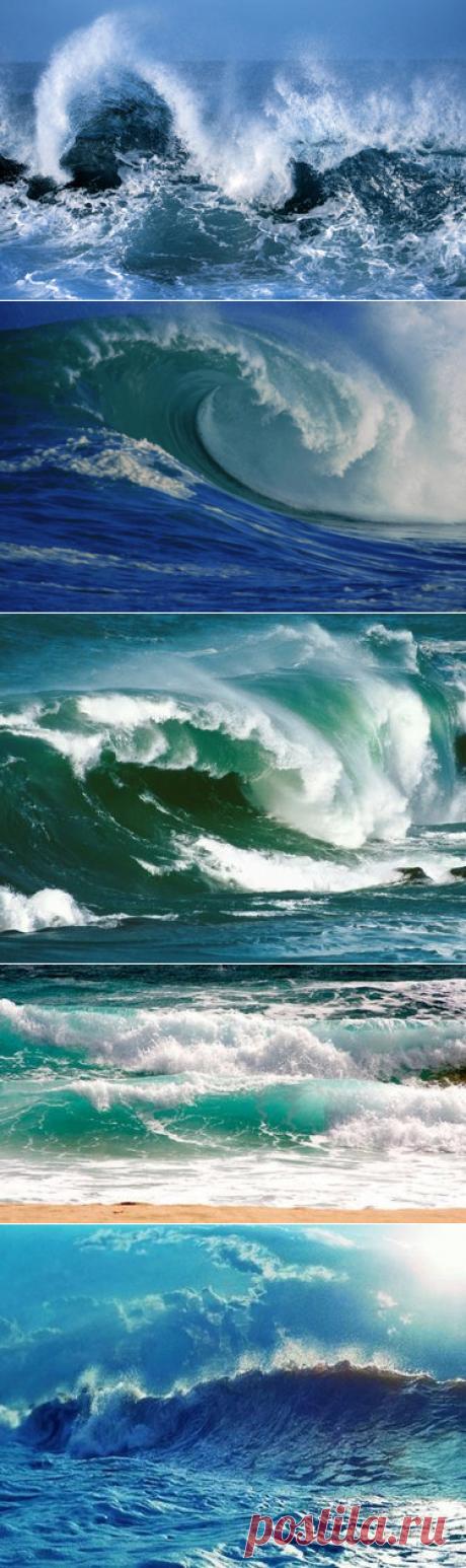 35 карточек в коллекции «Атлантический океан» пользователя Wikids.ru М. в Яндекс.Коллекциях