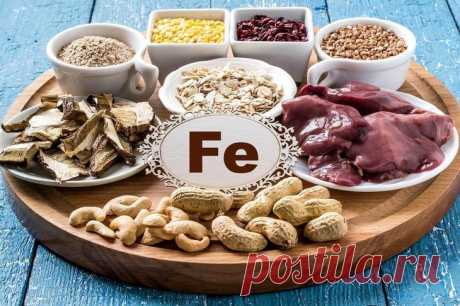 5 ways to increase iron level in an organism