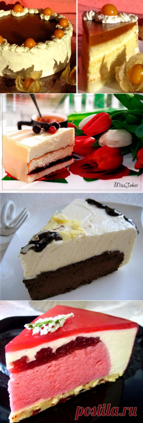 Воздушные, нежнейшие муссовые торты. Подборка: 20 пошаговых рецептов!