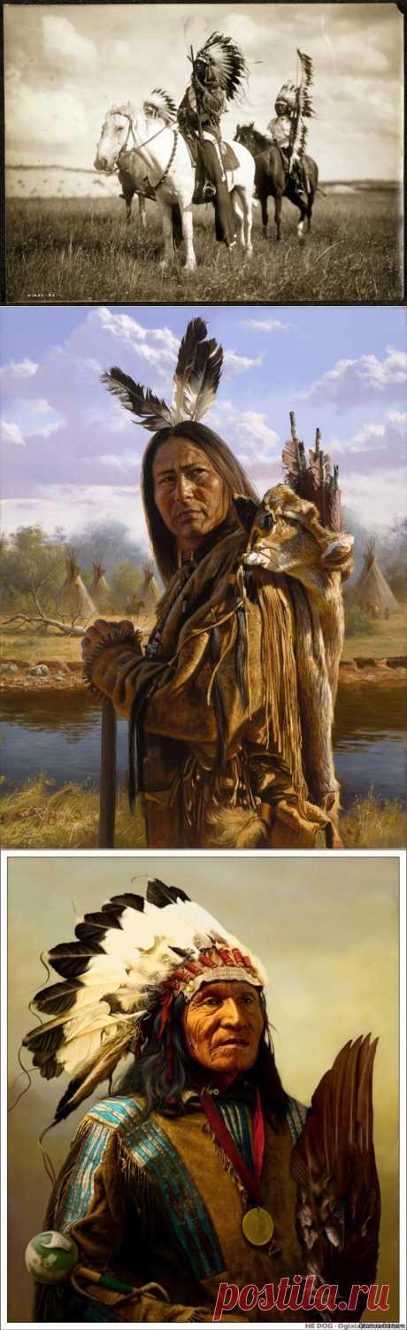 Правила жизни индейских вождей XIX века | В мире интересного.Правила жизни индейских вождей XIX века | В мире интересного. Мудрые индейцы говорили мало, но точно. Словоблудие у них не приветствовалось, поэтому каждый их афоризм по глубине мысли достоин осознанию. 1. Люби землю. Она не унаследована тобой у твоих родителей, она одолжена тобой у твоих детей. 2. Как ловок должен быть язык белых, если они могут сделать правильное выглядящим как неверное, и неверное выглядящим как правильное...