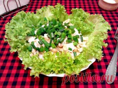 Salad with kiriyeshka and haricot
